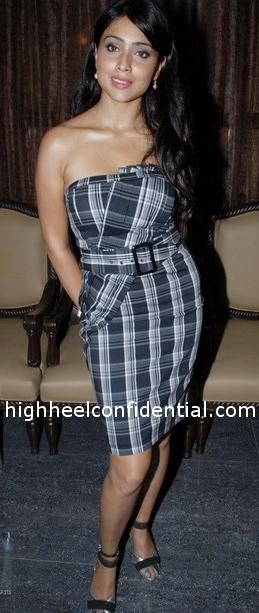 shriya-saran-cest-la-vie-plaid-dress1.jpg
