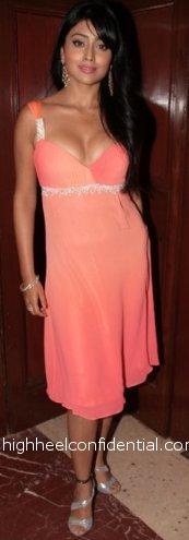 shriya_mission_istanbul_pink.JPG