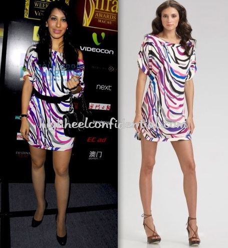 sophie-chaudhary-dvf-iifa-2009-welcoming-conference