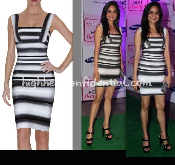 people-magazine-party-2010-madhoo-shah-herve-leger-dress
