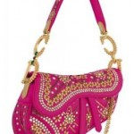 Limited Edition Dior 'India' Saddle Bag