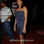 Letters: Priyanka's Dress