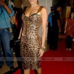 Found: Malaika and Shilpa's Dress