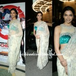 Deepika Attends 'Chandni Chowk To China' LA Premiere: A First Look