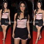 filmfare-awards-2010-riya-sen-pink-and-black-dress