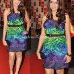 filmfare-awards-2010-shezahn-padamsee-dvf-dress