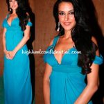 waves-concert-2010-neha-dhupia