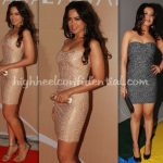 sameera-reddy-ipl-awards-tanushree-dutta-3d-dome