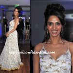 mallika-sherawat-cannes-2010-dior-party