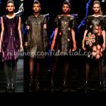 wlifw-winter-2011-rajesh-pratap-singh-hhc-1