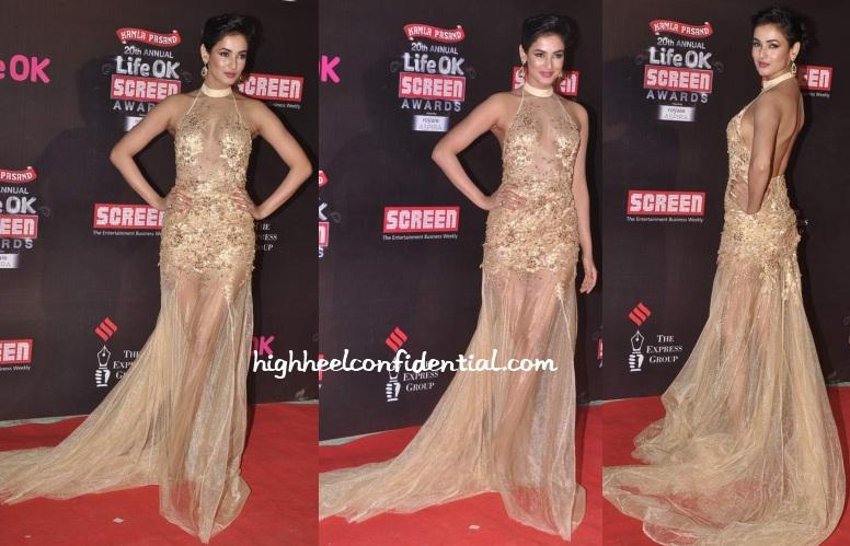 sonal-chauhan-amrit-raj-bora-lifeok-screen-awards-2014