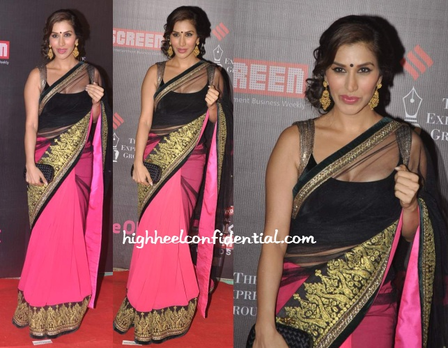 sophie-choudry-manish-malhotra-screen-awards-2014