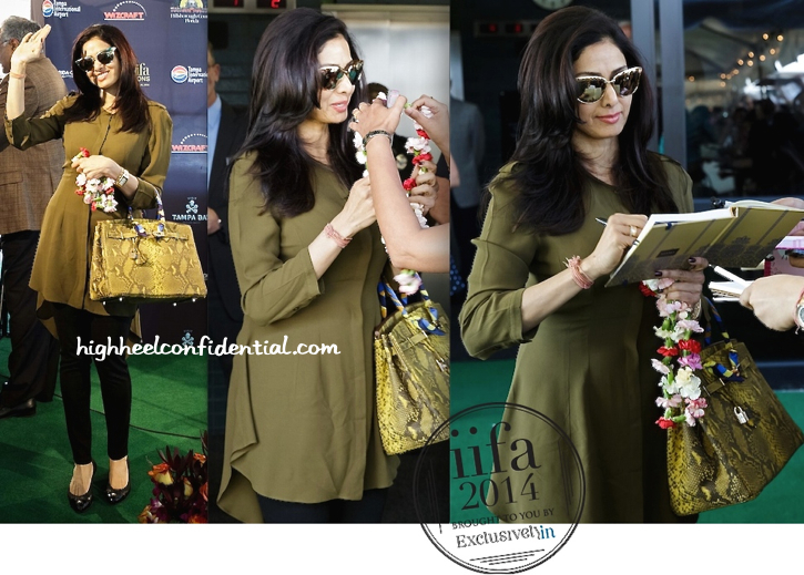 sridevi arrives at tampa for iifa 2014