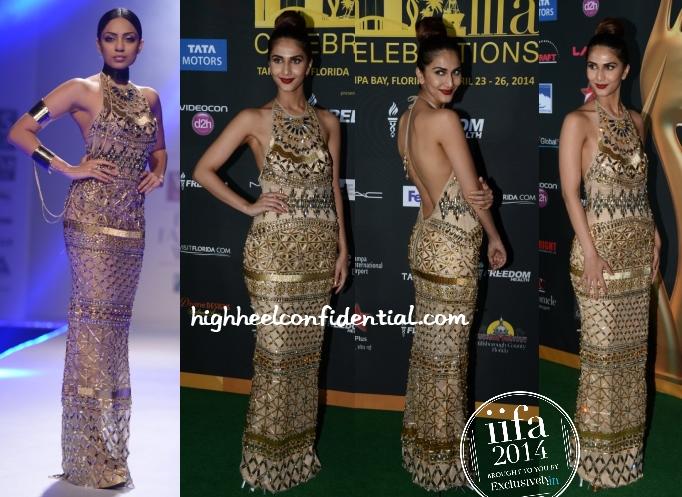 vaani-kapoor-raakesh-agarvwal-iifa-awards-2014