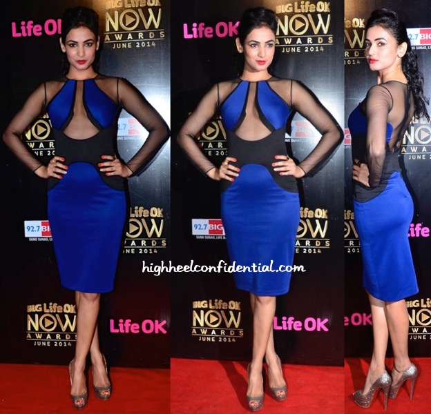 Sonal Chauhan In Amritraj Bora At Life OK Awards 2014