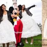 Disneyland Diaries