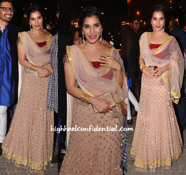 sophie choudry in manish malhotra at bachchans diwali bash