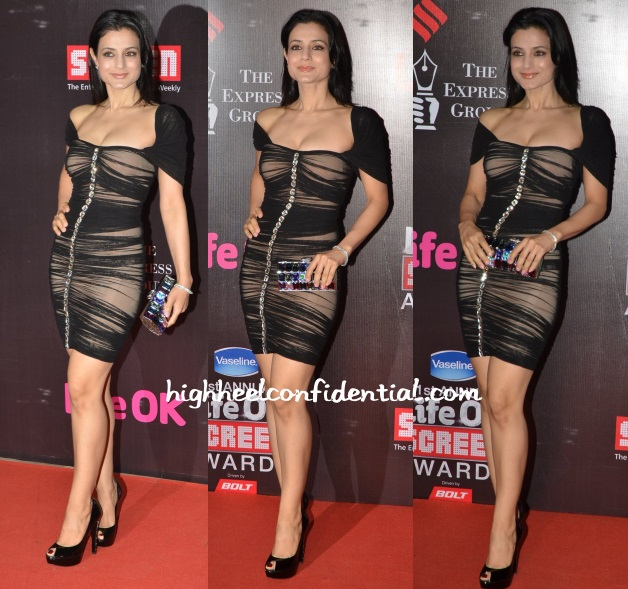 ameesha-patel-ramona-narang-screen-awards-2015