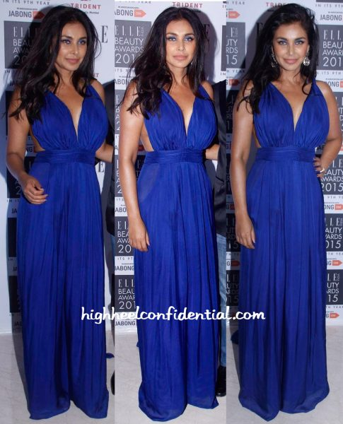 Lisa Ray At Elle Beauty Awards 2015-1