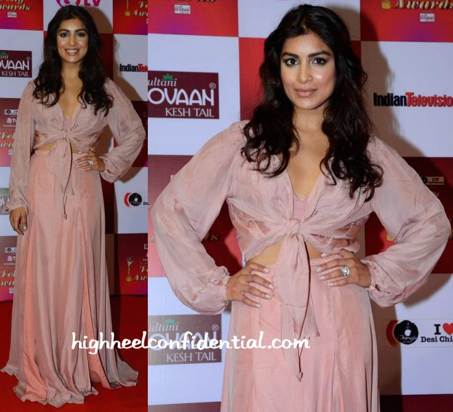 Pallavi Sharda In Deme By Gabriella At Telly Awards 2015-2