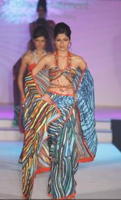 satya-paul-colombo-sari-2.jpg