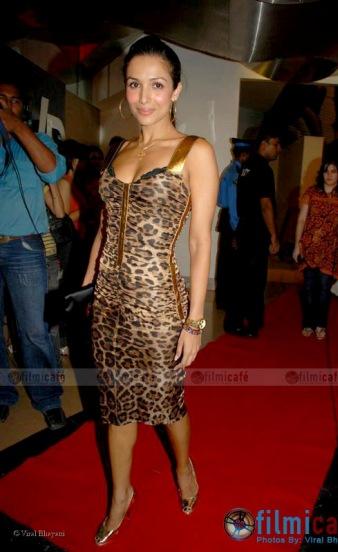 malaika-satc-animal-print-dress.jpg