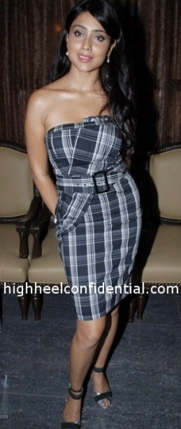 shriya-saran-cest-la-vie-plaid-dress-bebe-again.jpg