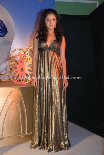 tanushree-dutta-gitanjali-metallic-gown-1.jpg