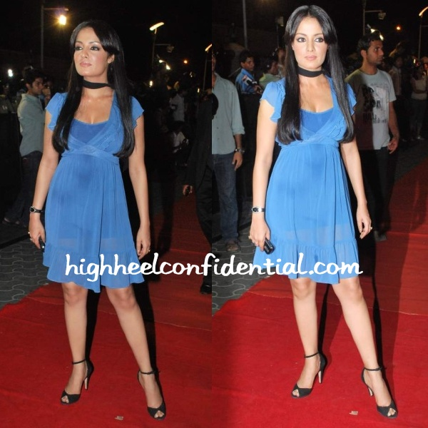 celina-jaitley-paying-guest-premiere