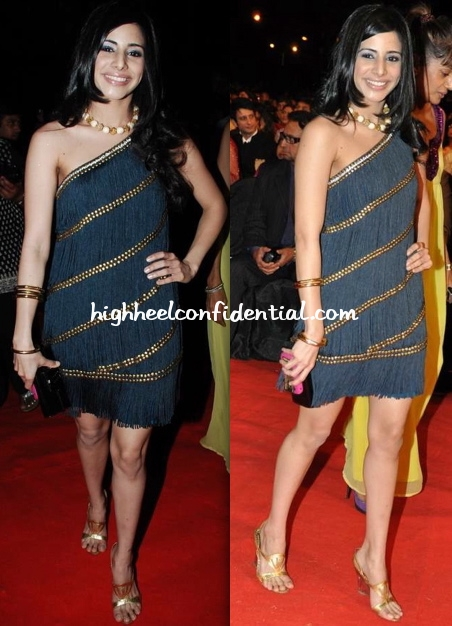 soniya-mehra-stardust-awards-2010-surily-goel-dress
