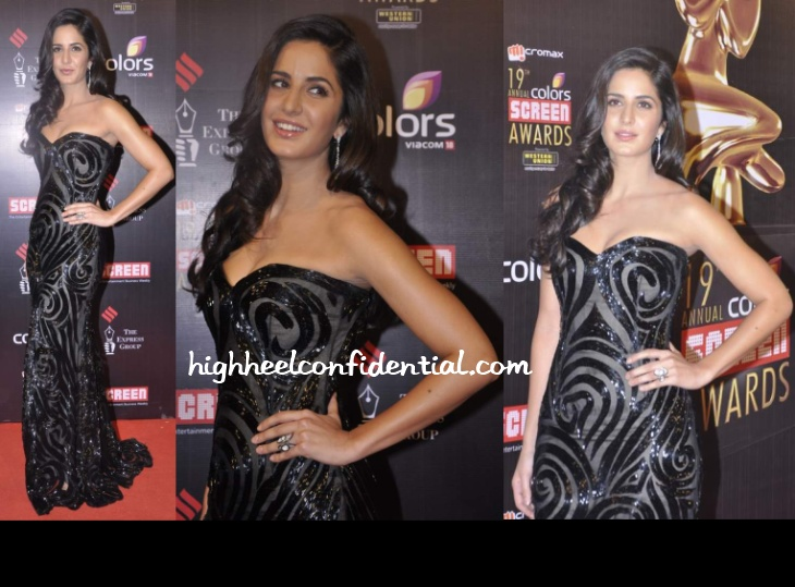 katrina-kaif-naeem-khan-screen-awards-2013