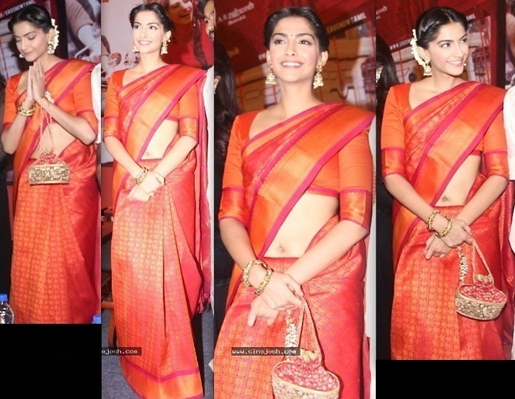 ambikapathy-sonam kapoor-chennai press meet-Raanjhanaa-1
