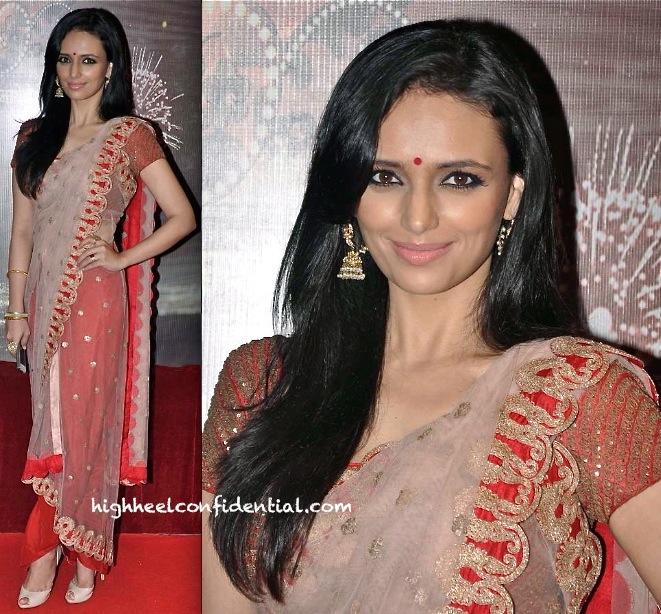 roshni chopra in anamika khanna at ita awards 2013-1