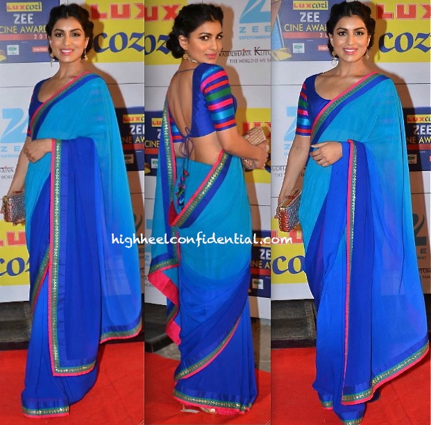 zee cine awards 2014-pallavi sharda-nachiket barve