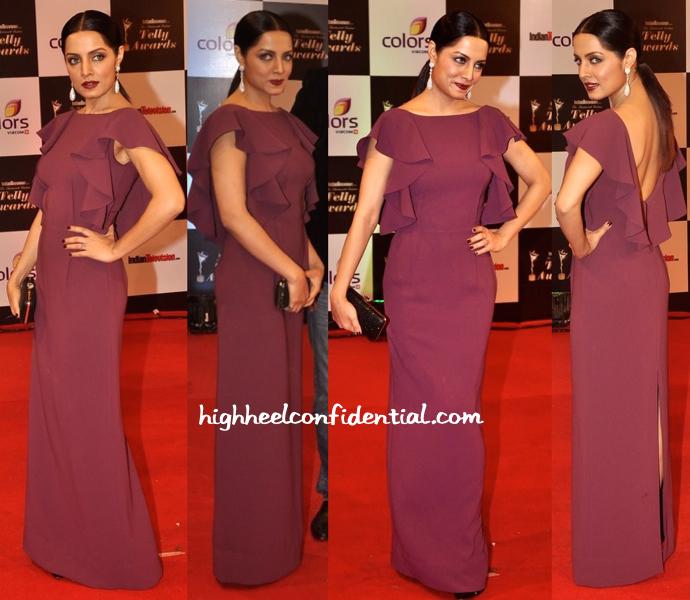 Celina Jaitly In Gauri And Nainika At Indian Telly Awards 2014-1