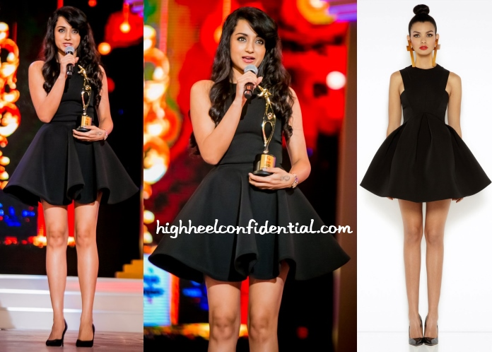 trisha-aq-aq-siima-2014-awards
