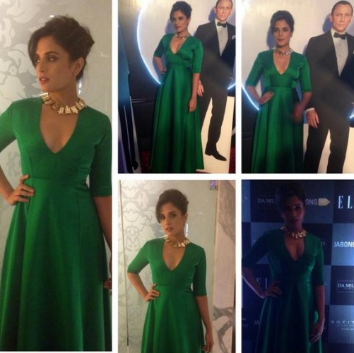 richa-chadda-sanjay-garg-elle-beauty-awards-2014-1