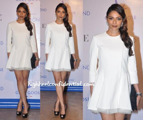 kalyani-chawla-dior-grey-goose-fly-beyond-awards-2014