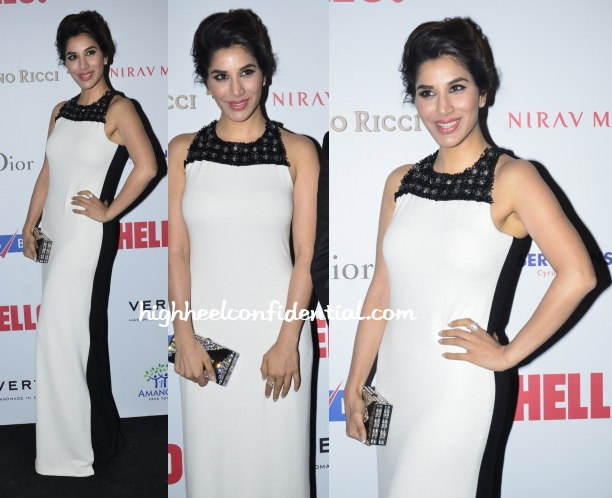 sophie-choudry-rohit-gandhi-rahul-khanna-hello-awards-2014
