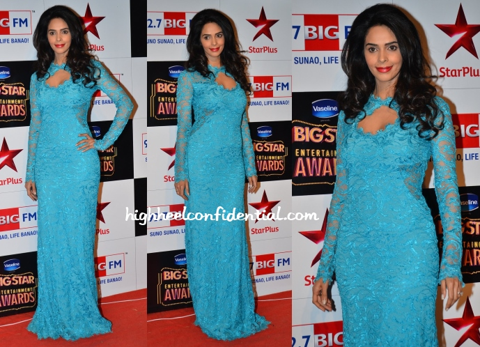 mallika-sherawat-big-star-entertainment-awards-2014-pucci
