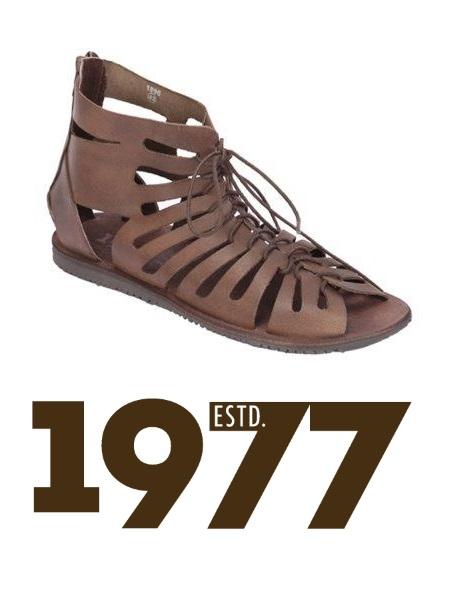 estd-1977-gladiators