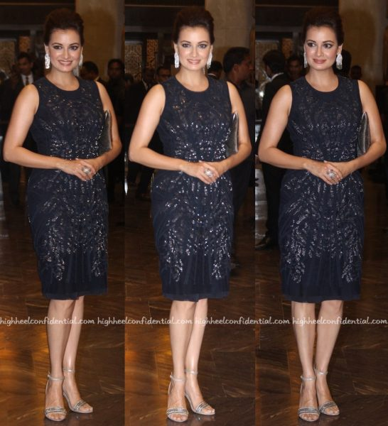 Dia Mirza In Rohit Gandhi + Rahul Khanna At Preity Zinta-Gene Goodenough Wedding Reception